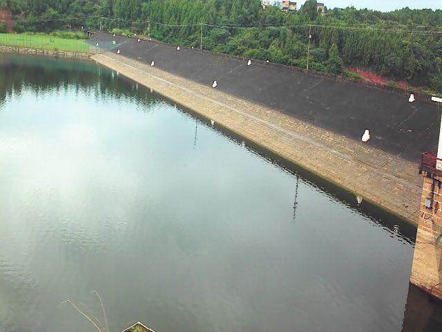 小型水库大坝安全监测设施建设与运行技术指南