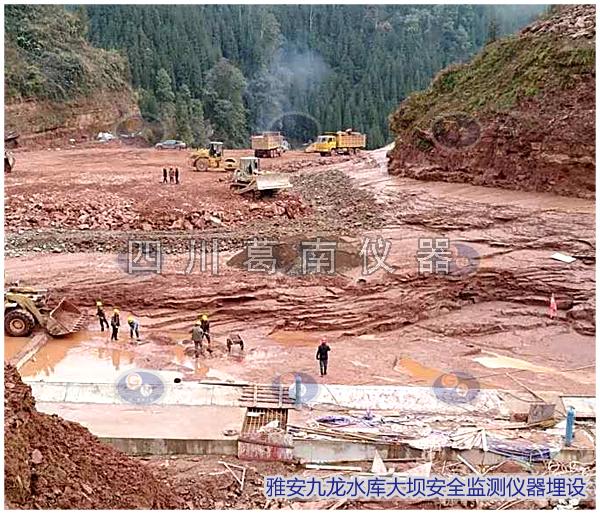 雅安九龙水库大坝安全监测仪器埋设及安装